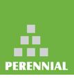 Perennial Capital Advisors